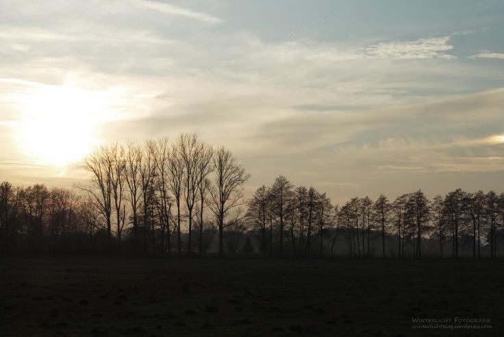 Niedersachsen, 2011